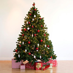 7-christmas-tree-400x400